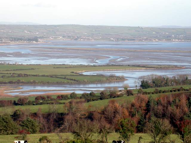 dungarvan_killongfordwnbay_nov2004.jpg